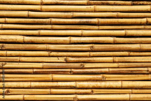 bambusowe-ogrodzenie