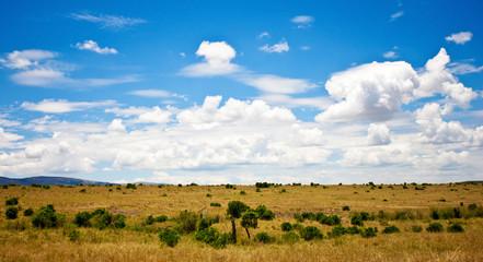 African landscape with wildebeests, Maasai Mara, Kenya