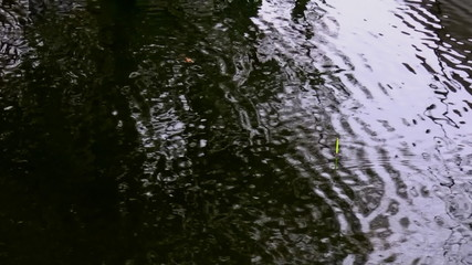 Fishing bobber in a rippled water