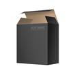 Black Package cardboard Box Opened