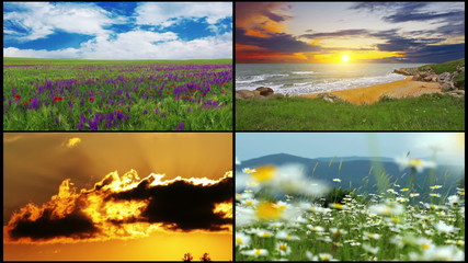 series of summer landscape