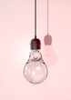canvas print picture - Hanging Light Bulb And Fitting