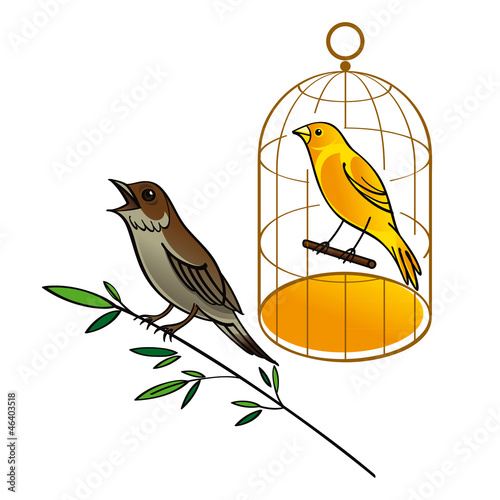 Nightingale and Canary in the golden cage