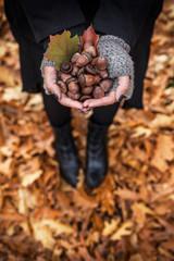 Erntezeit im Herbst