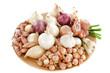 variétés d'oignons, échalotes et ail