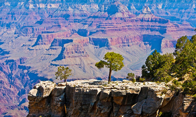 Grand Canyon, Arizona, USA
