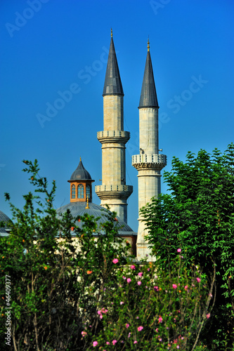 Doms and minarets of Ulu Cami Mosque Edirne