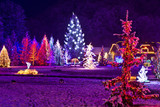Fototapety Christmas fantasy - park & forest in xmas lights