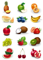 Fruits and berries illustration