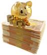 tirelire dorée sur liasse de billets