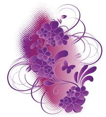 floral violette