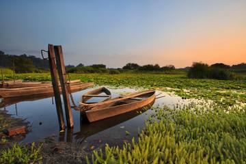 Velhos barcos do lago