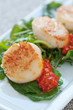 Seared Scallop Appetizer