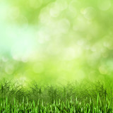 Fototapety Meadow. Abstract natural backgrounds for your design
