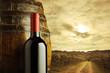 red wine bottle, vineyard on background