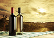 Wine bottles, vineyard on background