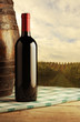 red wine bottle, vineyard on background