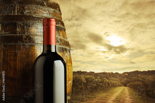 red wine bottle, vineyard on background © stokkete
