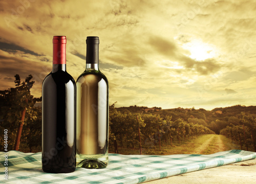 Wine bottles, vineyard on background © stokkete