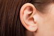 Leinwanddruck Bild - ear