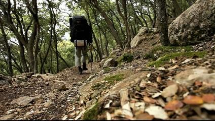 Wandern Mallorca 2