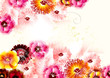 Cute flower background in gentle and bright colors