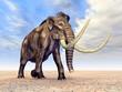 canvas print picture - Mammut