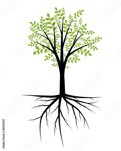 Abstract decorative tree with foliage and roots