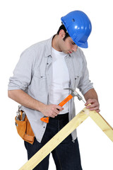 portrait of joiner hammering down nail