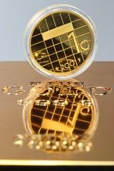 Goldgulden01