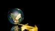 Sagittarius - Zodiac - Sagittario - Zodiaco - Earth - Terra
