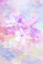 Beau, sensible, artistique avec des fleurs de printemps