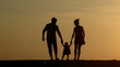 Silhouette of family walking together at sunset