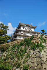 Rock Wall and Himeji Castle