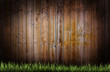 Grass on a wooden background