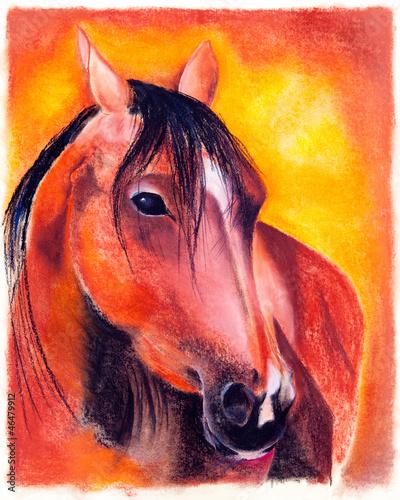 Pastell - Pferd
