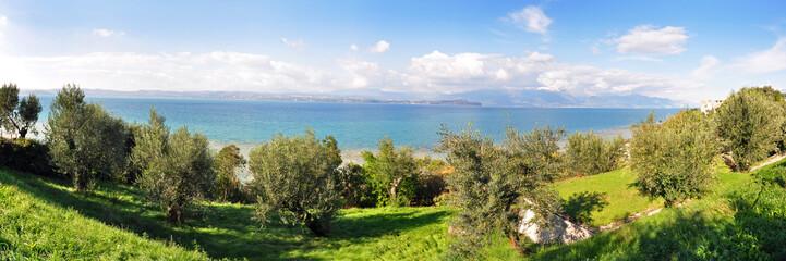 Panoramafoto Gardasee mit Olivenhain