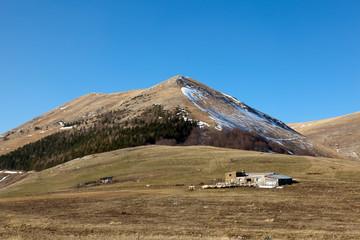 Gregge al pascolo nel Parco Nazionale dei Monti Sibillini