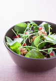 Salad with lettuce, pomegranate, walnuts and cheese