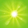 Sunny rays green