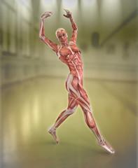 Anatomia de Mujer Bailando Flamenco