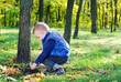 Little boy playing in lush woodland