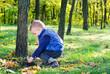 Little boy playing in lush woodland