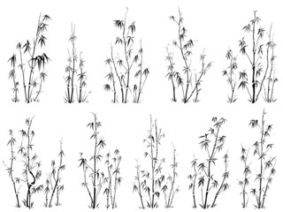 Set of vector silhouettes of bamboos.
