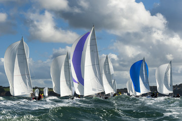 group yacht at regatta