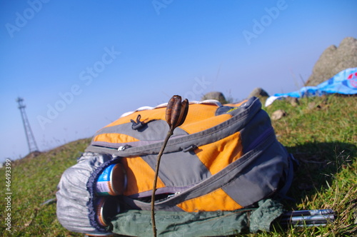 knapsack at the top of the mountain with alone flower