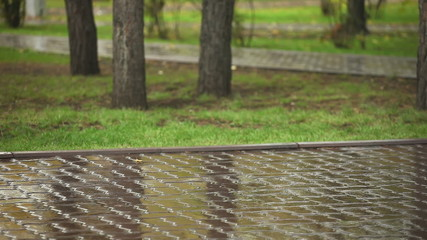 Rain. Wet Pavement.