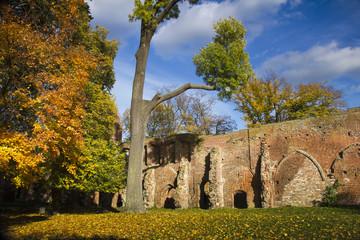 Herbst im Kloster