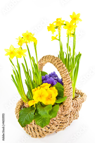 canvas print picture Korb mit Blumen, basket with flowers