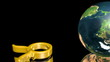 Taurus - Zodiac - Toro - Zodiaco - Earth - Terra